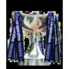 Vincitore Coppa di Lega scozzese