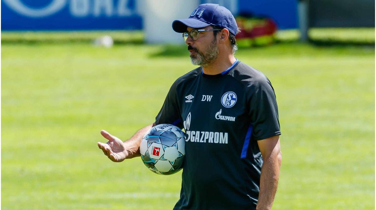 Wagner Schalke 04 Fernab Von Wahnsinnig Stabil Embolo