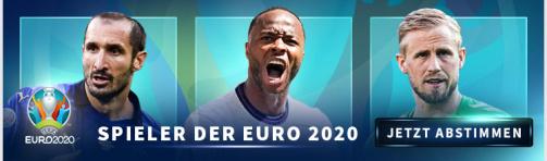© Transfermarkt - Jetzt den Spieler der EURO 2020 wählen - Link zur Wahl