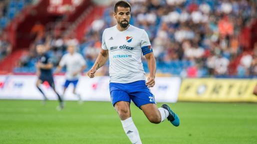 Milan Baros Player Profile Transfermarkt