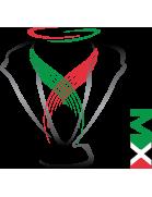 Copa MX Apertura