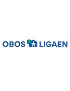 Relegation OBOS-ligaen