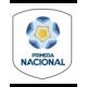Transición Primera Nacional - Playoff