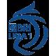 Лига 1 Индонезия
