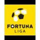 Fortuna Liga - Relegation Group