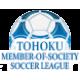 Tohoku Soccer League (Div.1)