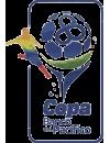 Serie A Tercera Etapa (bis 2018)