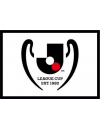 Coupe de la Ligue japonaise de football