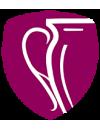 Premier League Meisterschaftsrunde