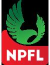 Nigeria Professional Football League Playoffs