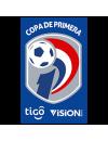 Primera División Paraguay Playoffs