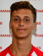 Gabriele Piccinini