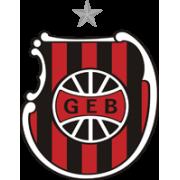 GE Brasil