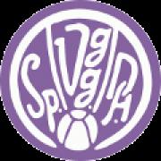 SpVgg Durlach-Aue