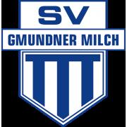 SV Gmunden Jugend