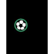 FC Buchs