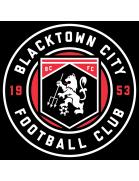 Blacktown City Demons
