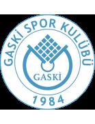 Gaskispor