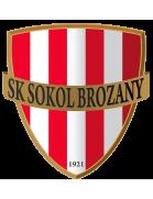 SK Sokol Brozany