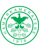 Hamarkameratene II