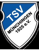 TSV Münchingen - Stadion - Kunstrasenplatz TSV Münchingen | Transfermarkt