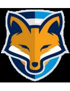 Grêmio Esportivo Anápolis (GO) - Perfil do clube | Transfermarkt
