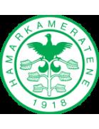 Hamarkameratene U19