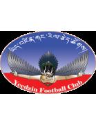 Yeedzin FC