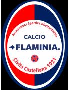 Flaminia Giovanili