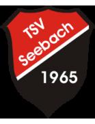 TSV Seebach