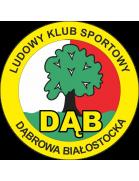 Dab Dabrowa Bialostocka