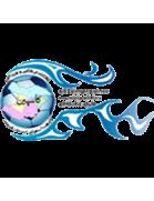 Caspian Qazvin FC