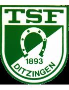 TSF Ditzingen