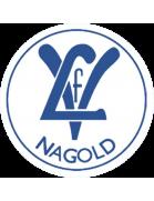 VfL Nagold Молодёжь