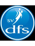 SV DFS Opheusden