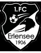 1.FC Erlensee