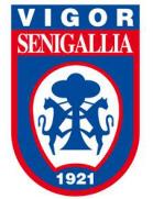 US Vigor Senigallia