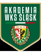 Akademia Piłkarska Śląsk Wrocław