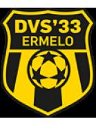 DVS '33 U19
