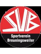 SV Breuningsweiler
