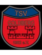 TSV Goldberg