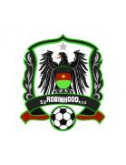 SV Robinhood Amsterdam