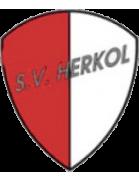 SV Herkol