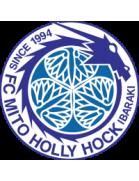 Mito HollyHock Youth