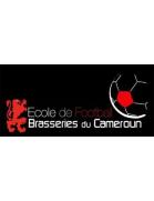 Ecole De Football Des Brasserie De Cameroun