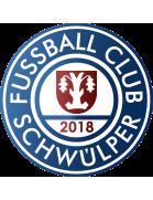 Fc Schwülper