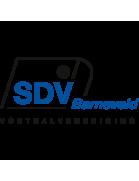 SDV Barneveld Jugend