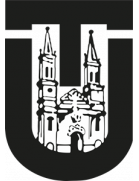 GDU Torcatense Sub-15