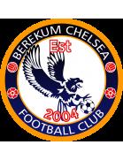 Berekum Chelsea Youth