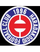 Harada Steel FC